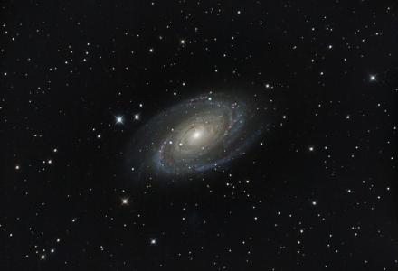 Bodies Galaxy M81