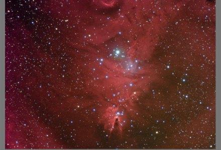 NGC2264 - Cone Nebula